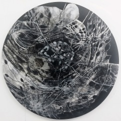 Sex My Brain, Melissa Budasz (2014)